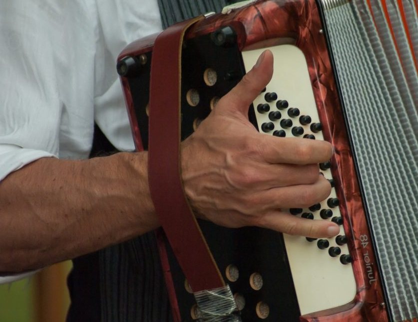 Main sur un accordéon